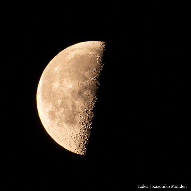 夜明け前の半月。Half moon before dawn.2020-0415 04:00